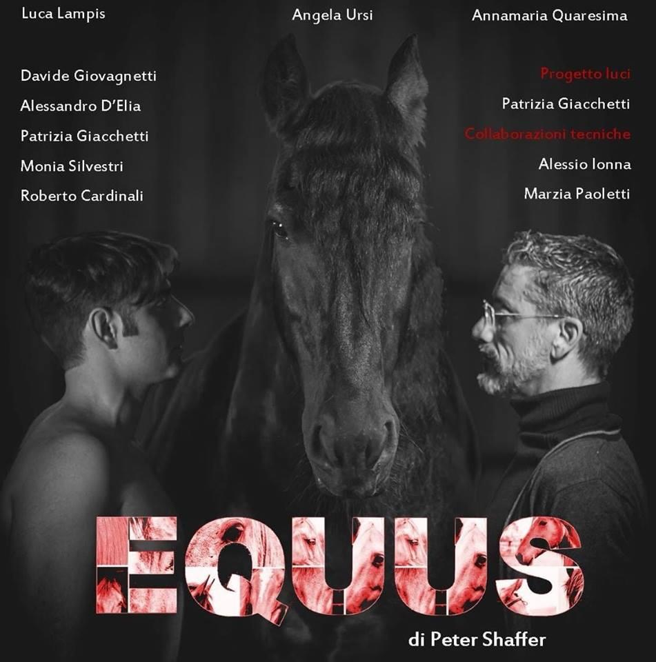 Equus Luca Lampis